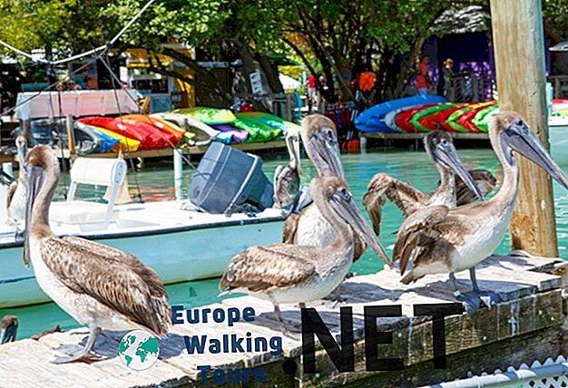 Übernachten auf den Florida Keys: Best Islands & Hotels