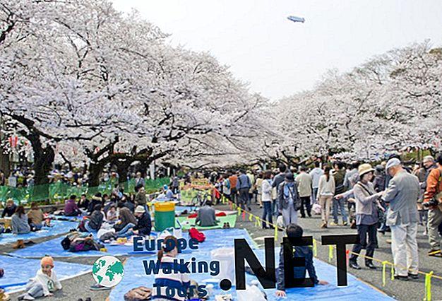 Где да останете в Токио: Бест Неигхборхоодс & Хотелс