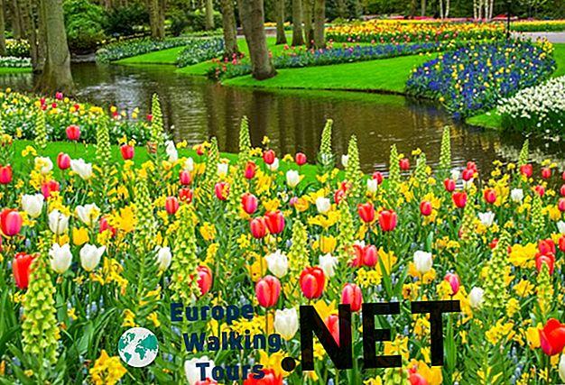 3 bedste dagsture i Holland