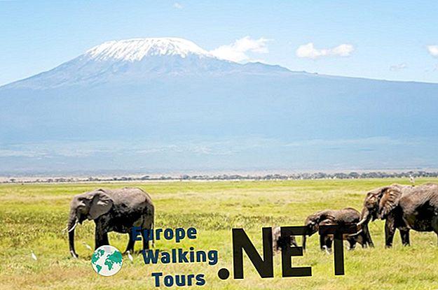 10 geriausių vietų aplankyti Tanzanijoje