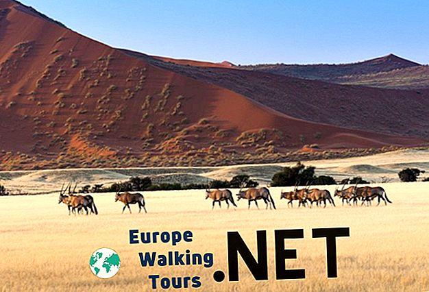 ナミビアの人気観光スポット10選