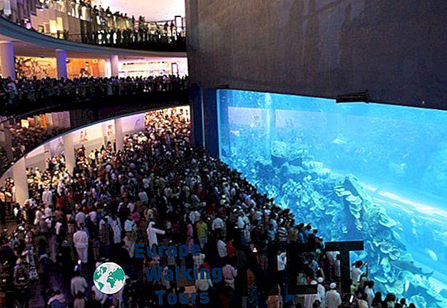 10 suurinta akvaariota maailmassa