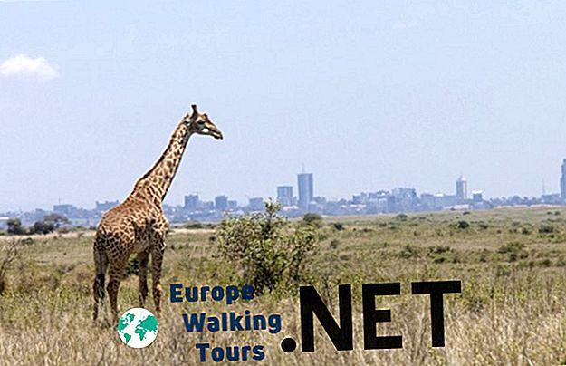 mjesto za upoznavanja nairobi kenya