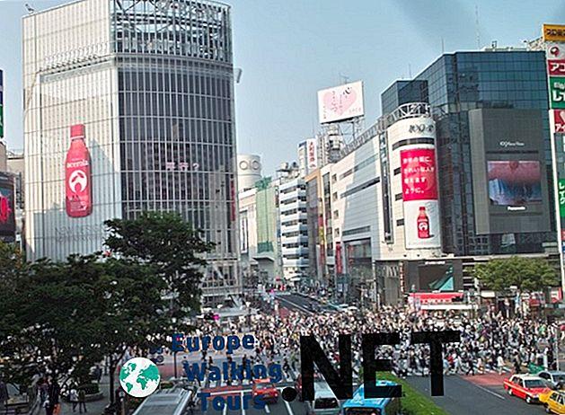10 parimat vaatamisväärsust Tokyos