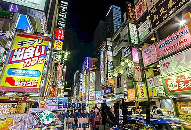 3 Tage in Tokio verbringen