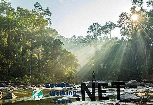 12 Най-красивите национални паркове в Малайзия