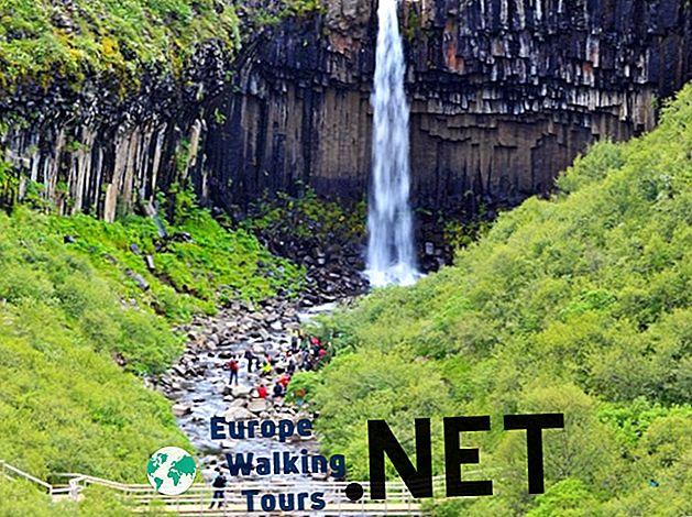 10 erstaunliche Nationalparks und Naturreservate in Island