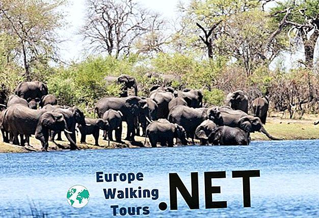 10 cele mai frumoase parcuri naționale din Namibia