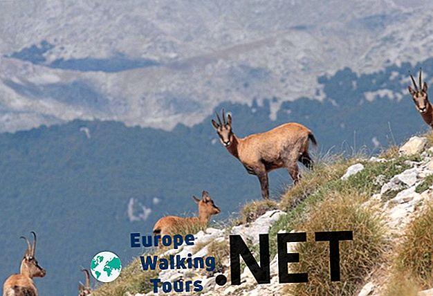 10 най-красиви национални парка в Италия