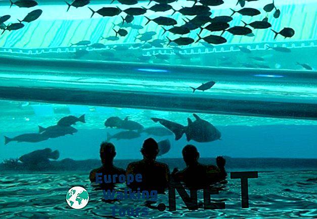 10 حمامات سباحة مذهلة في جميع أنحاء العالم